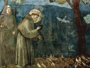 kazenie do ptaków, giotto, fresk asyż