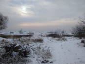 """Księżycowy krajobraz """"wzorcowego osiedla"""" (fot. MD)"""