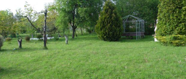 Młodzi działkowcy na ogół decydują się tylko na trawnik i drobne nasadzenia. Fot. U. Hreniak